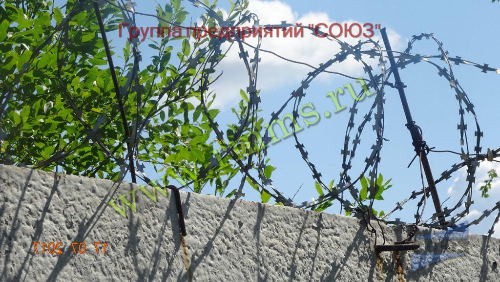 забор сбб егоза